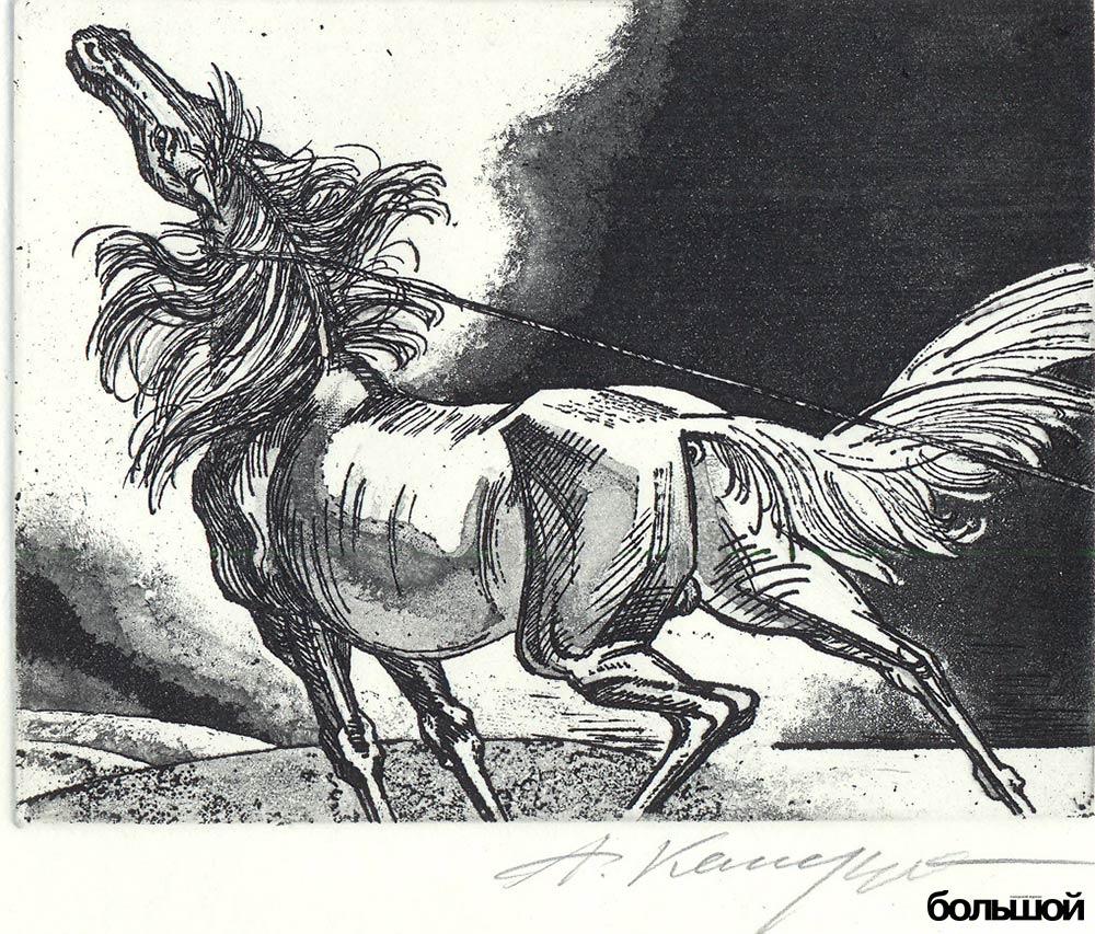 кашкуревич