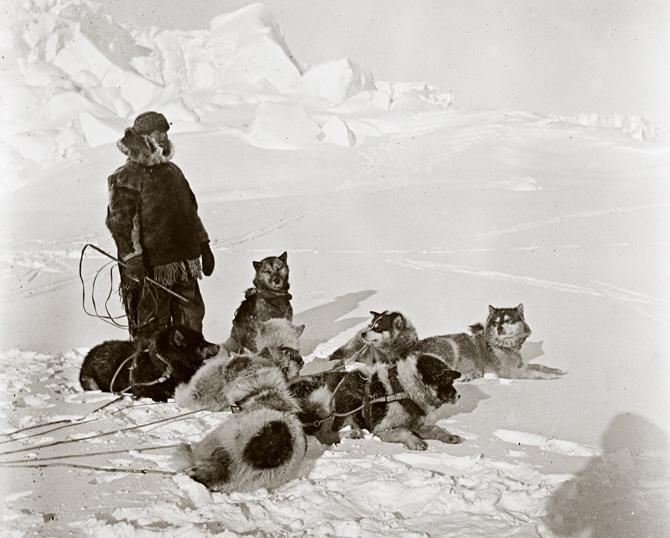 06-amundsen-dog-power-670