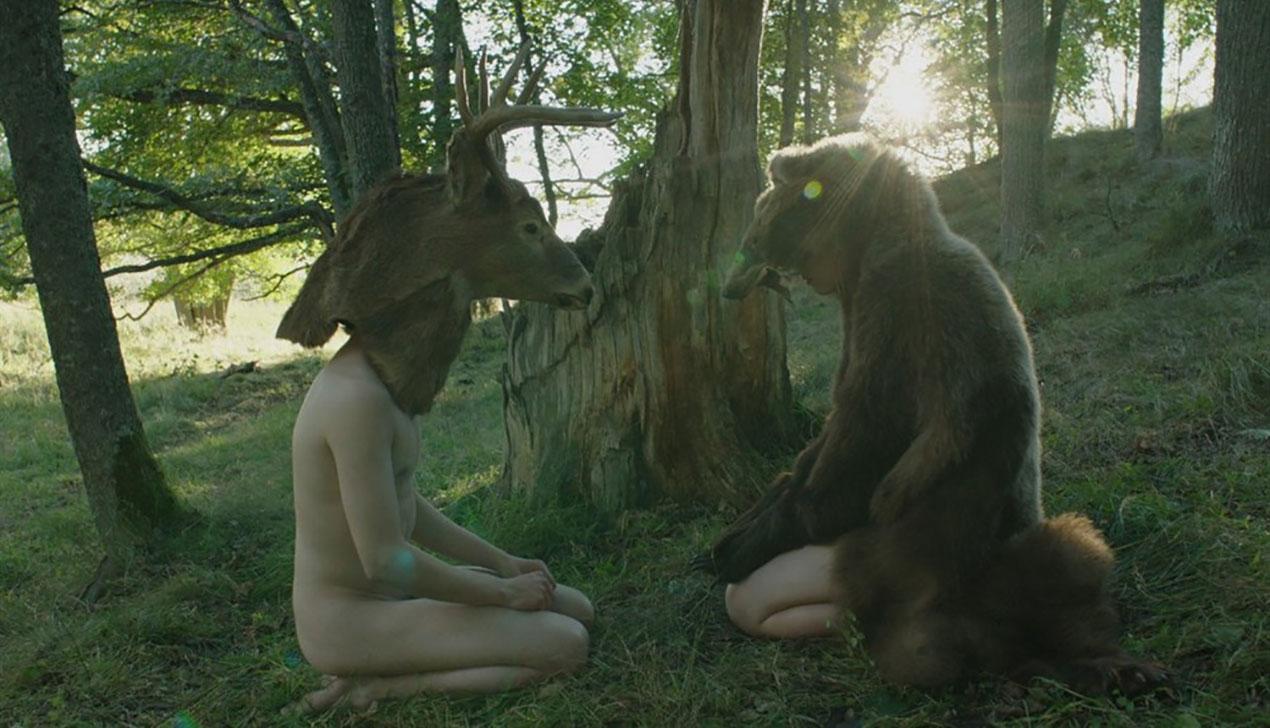 В Минск везут скандинавское кино: все показы фестиваля «Северное сияние»
