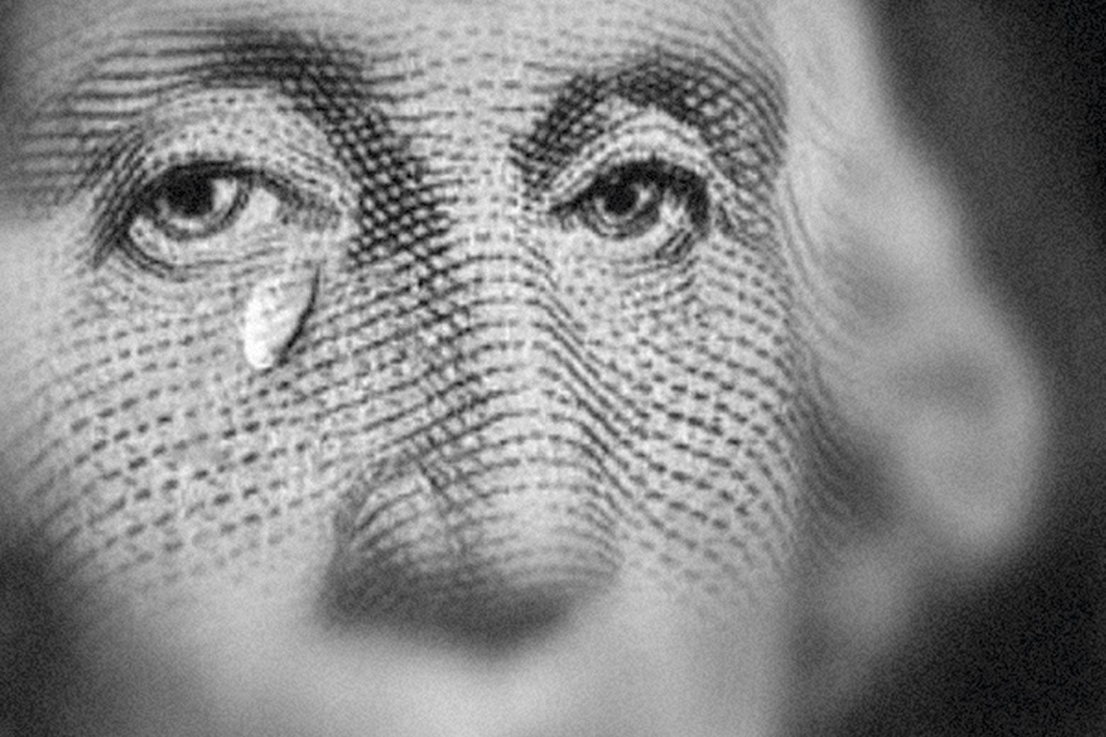 dollar_plachet