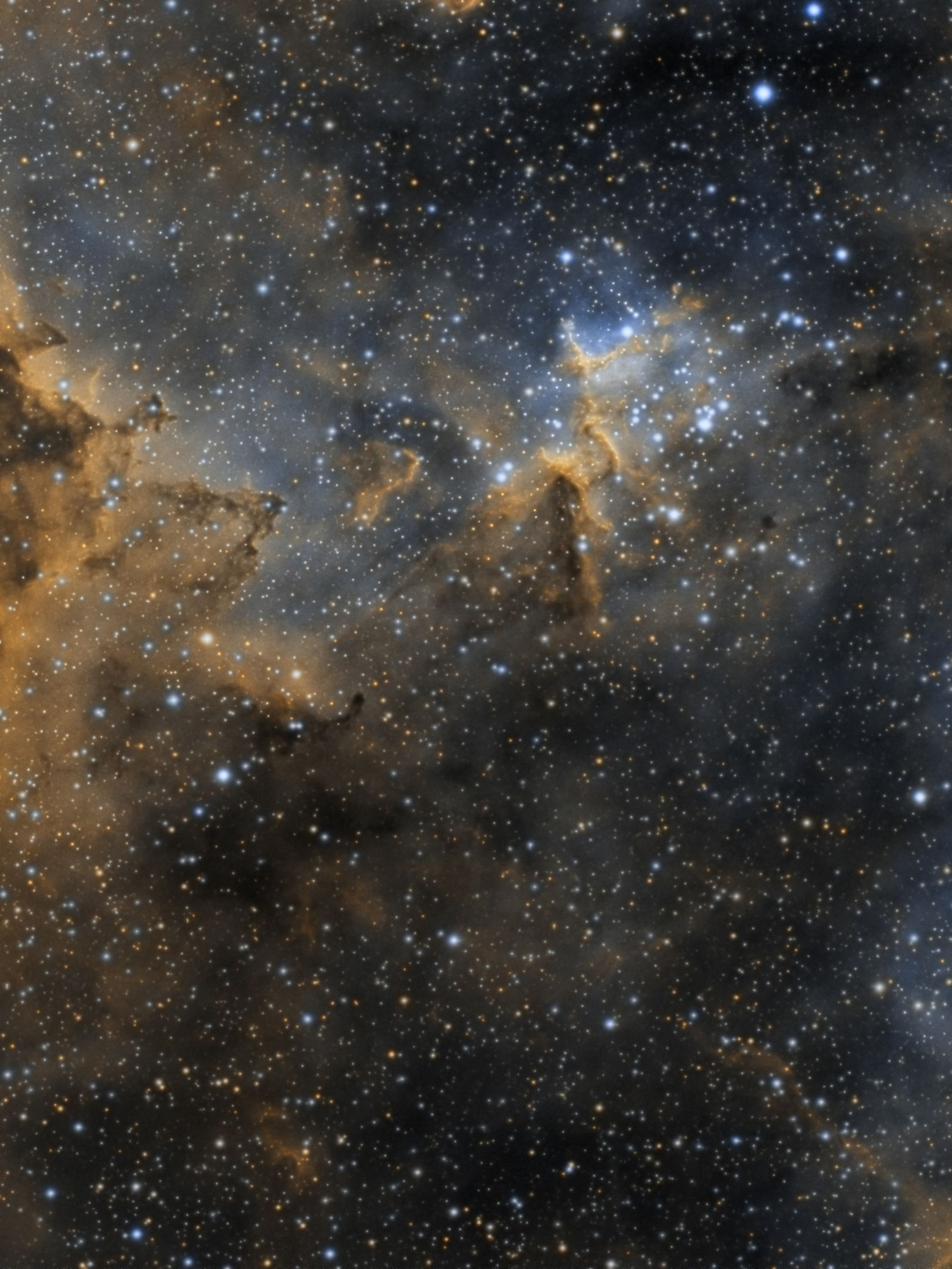 Melotte15 Heart of the Heart Nebula
