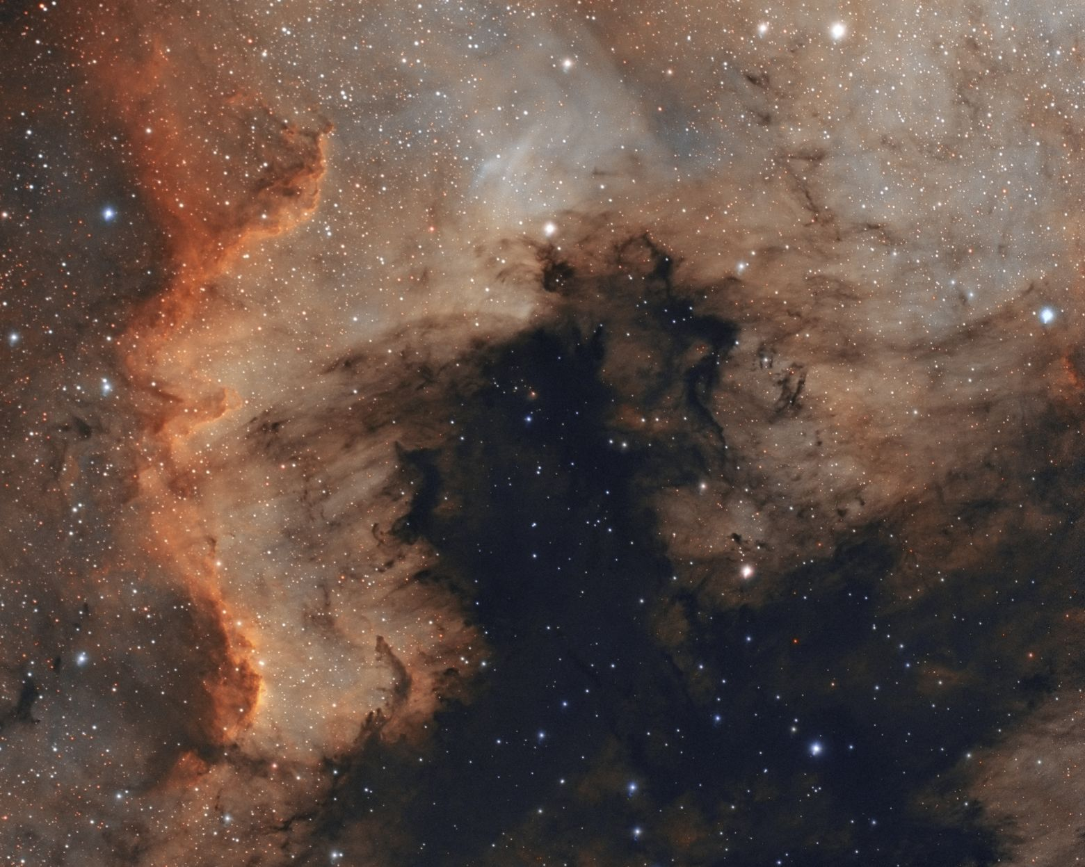NGC7000 The Great wall Of Cygnus