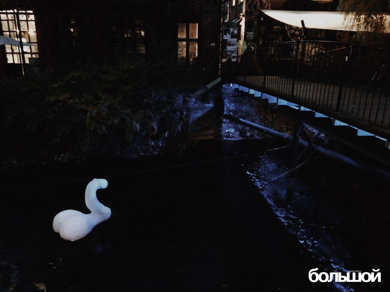 Лебедь у академии искусств