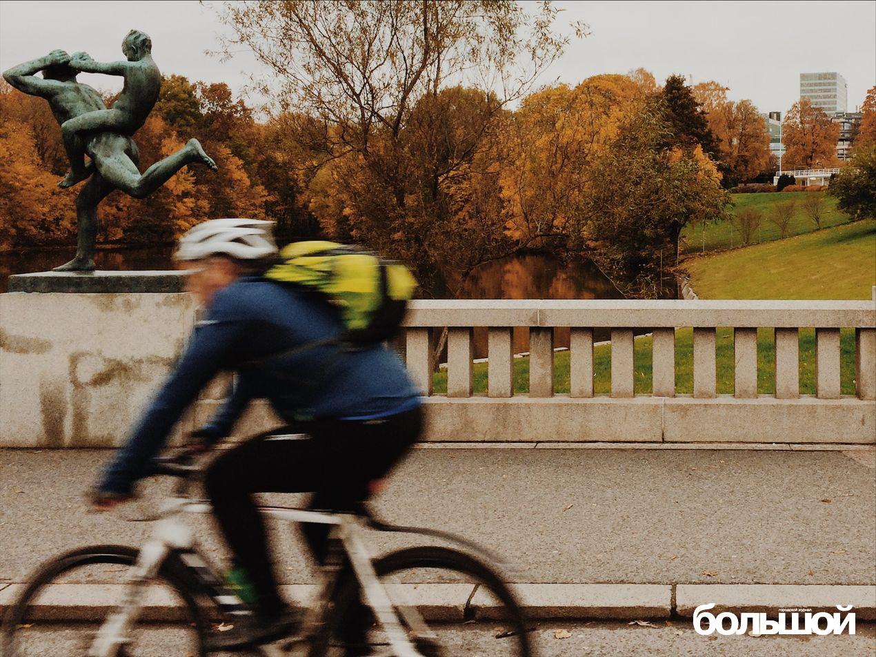 Словить норвежца в кадре - редкая удача, так как он постоянно в движении