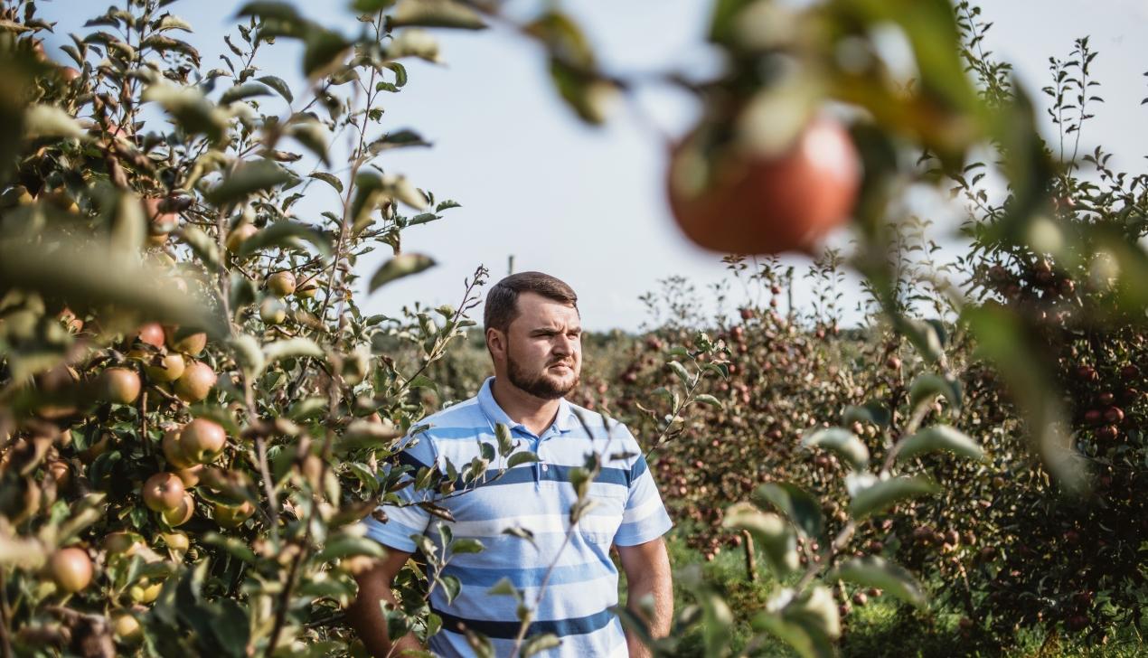 Welcome to Olshany — яблочный рай!