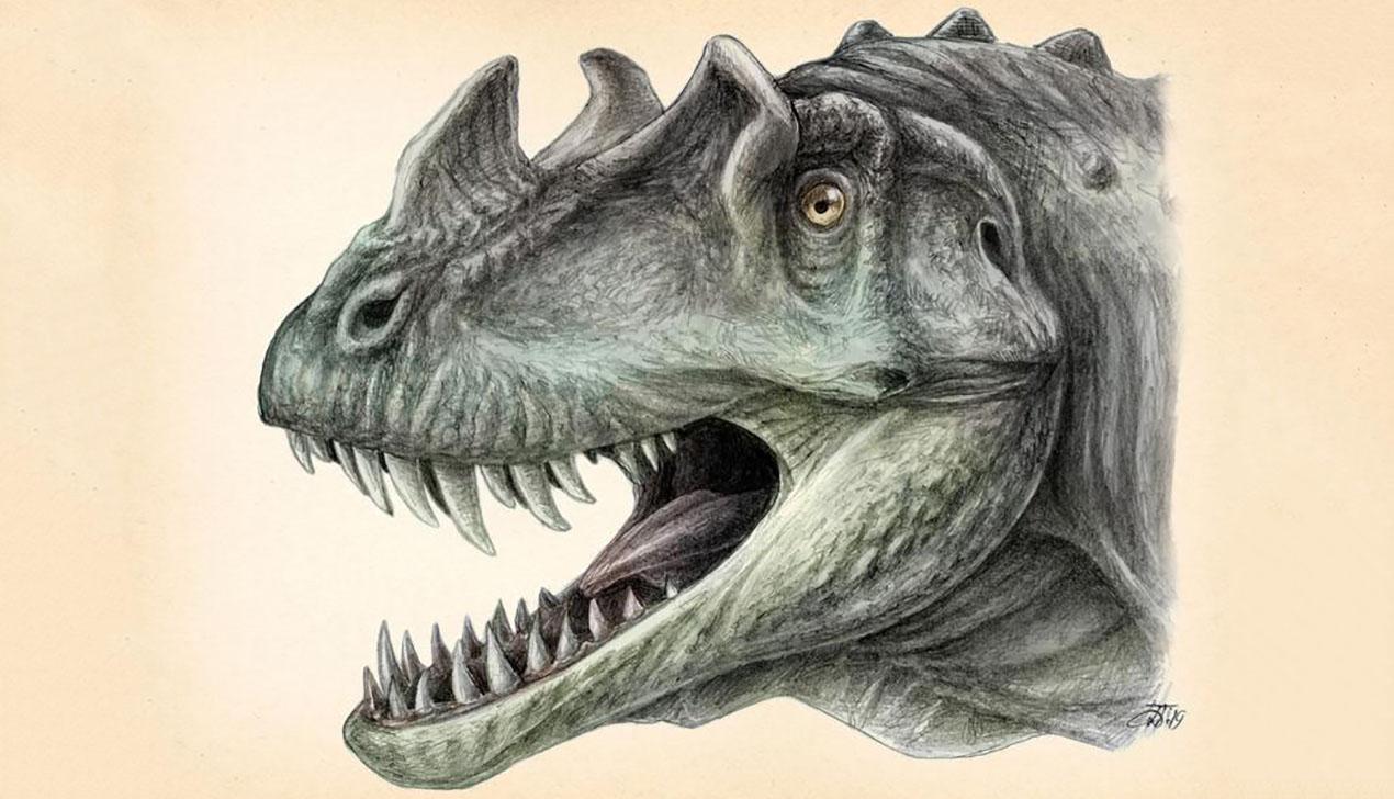 Рисунок динозавров беларуского ученого разместил журнал National Geographic