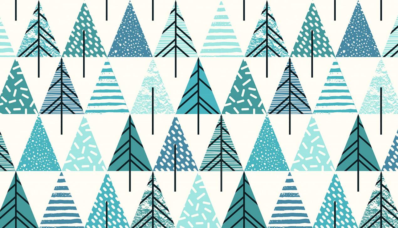 В Беларуси будут перерабатывать новогодние елки